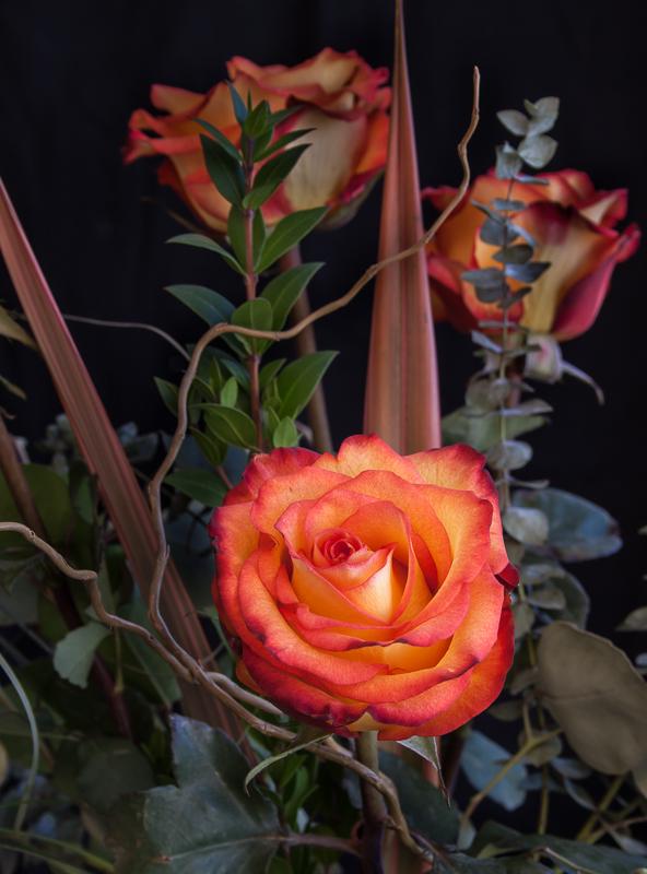 IMAGE: http://tommangelsdorf.com/potnphotos/roses.jpg